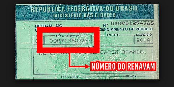 Número do RENAVAM 2021